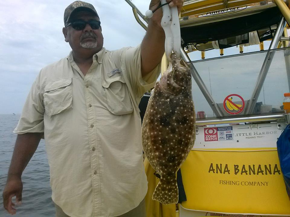 flounder (3)