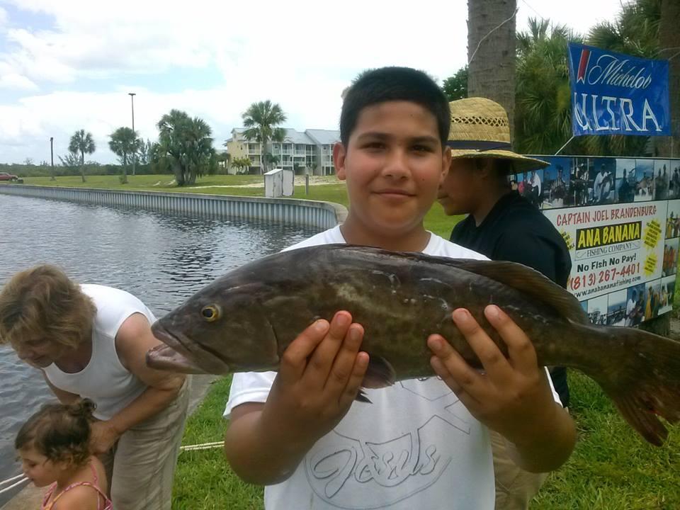 grouper (3)