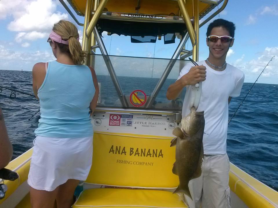 grouper (4)