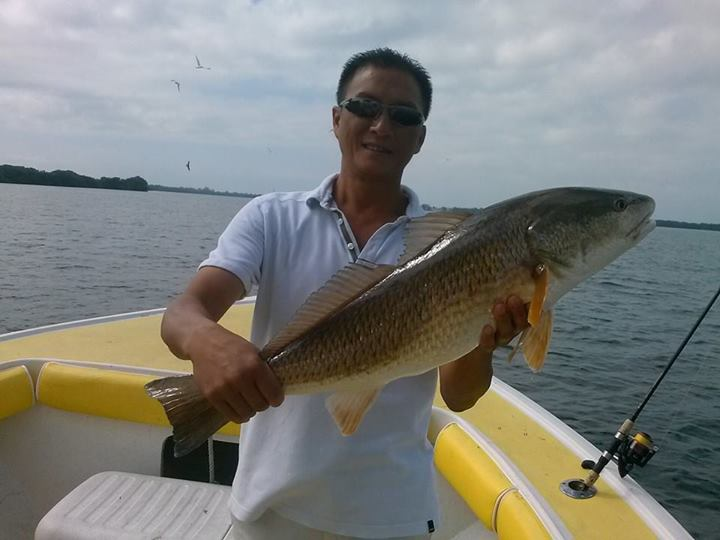 red fish (6)