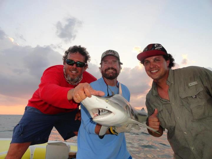 shark fishing (4)