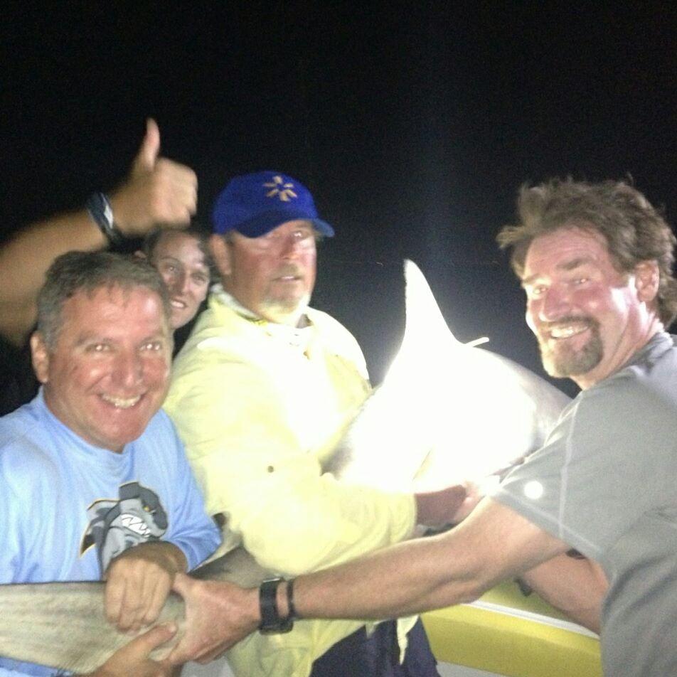 shark fishing (8)