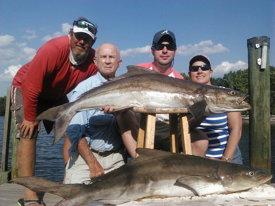 charter fishing Cobia Tampa FL