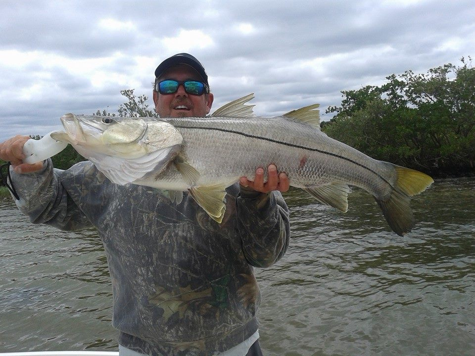 Snook Charter fishing