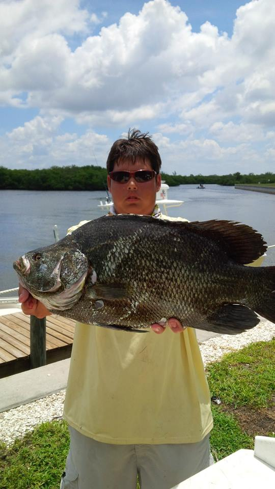Fishing Charter for Triple Tail Tampa